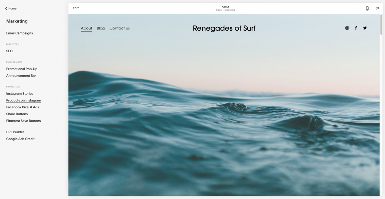 squarespace professional features screenshot